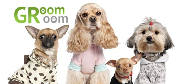 """Комплексный уход за собаками малых пород в салоне """"GroomRoom"""": гигиенический уход, модельные стрижки и многое другое! Всего от 120 грн.!"""